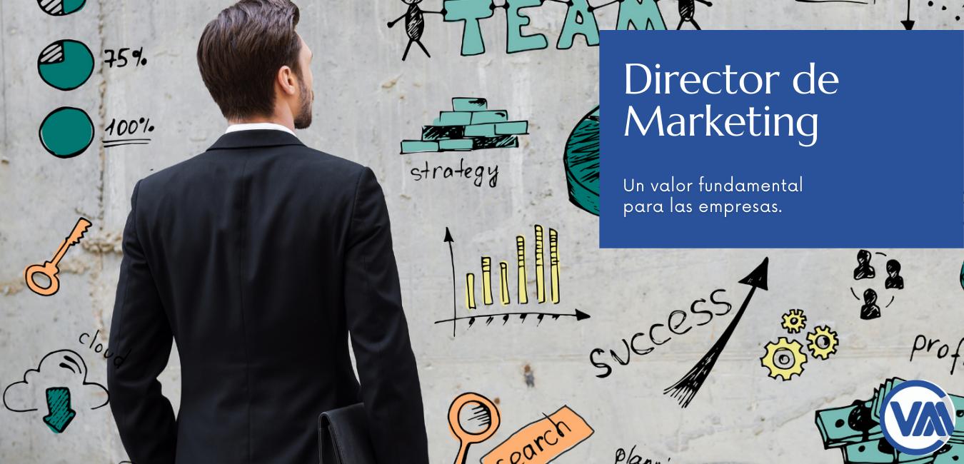 Director de Marketing un activo fundamental para las empresas web